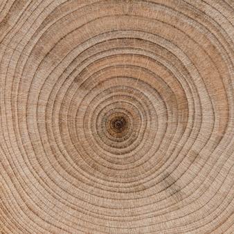 Mooi macro houten concept