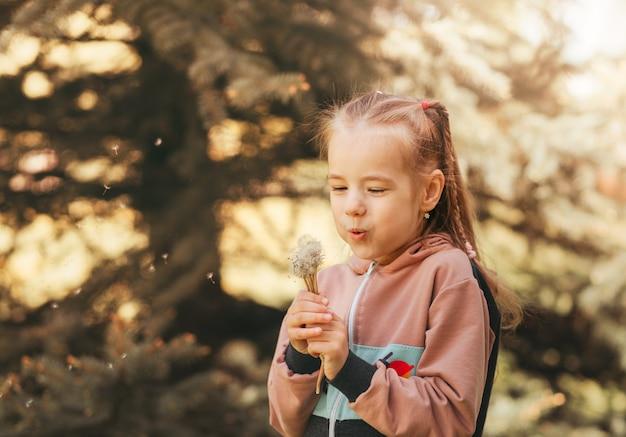 Mooi meisje blaast op paardebloem zomer in het park en doet een wens