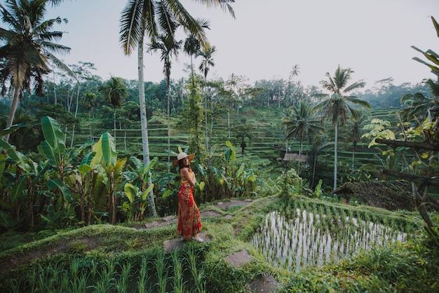Mooi meisje dat de rijstvelden van bali in tegalalang, ubud bezoekt. concept over mensen, reislust reizen en toerisme levensstijl