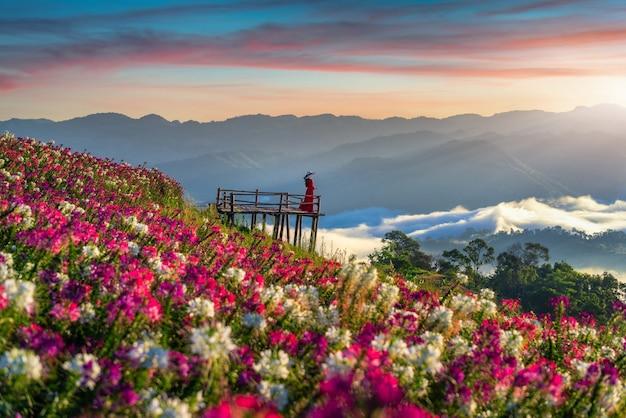 Mooi meisje dat geniet van bij bloemenvelden en zonsopganggezichtspunt in de provincie tak
