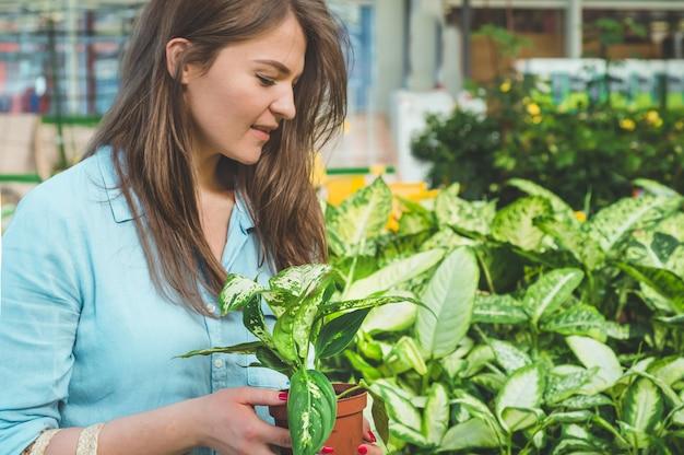 Mooi meisje klant kiest ficus planten in de winkel. tuinieren in serre. botanische tuin, bloementeelt, tuinbouwconcept