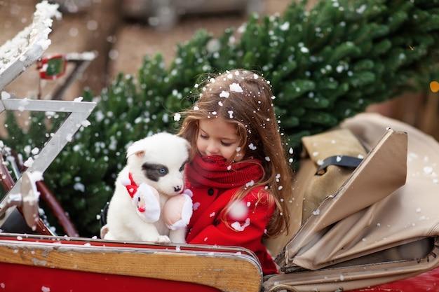 Mooi meisje met een puppy in de auto van kerstmis