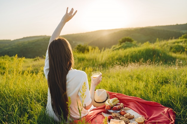 Mooi meisje op een picknick in asummer veld
