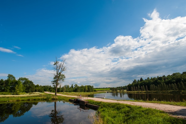 Mooi nog meer met bomen aan de horizon en witte gezwollen wolken aan de hemel. vreedzame zomerdag in het huisje. grote groene bomen op een meer