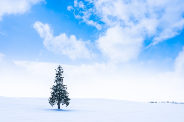 Mooi openluchtaardlandschap met alleen boom in het weerseizoen van de sneeuwwinter