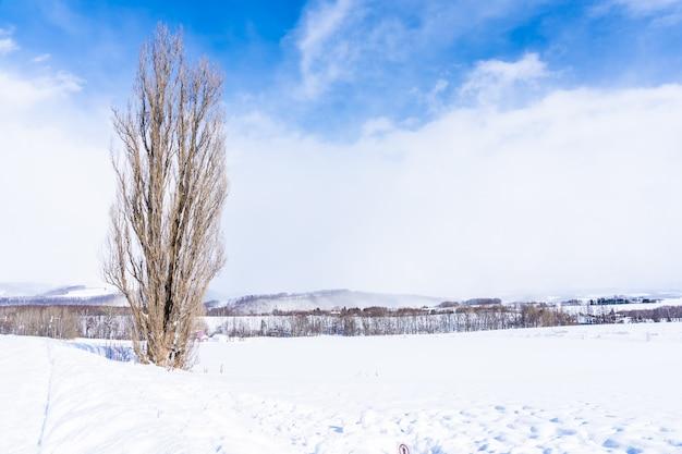 Mooi openluchtaardlandschap met boom van ken en mary op bieigebied