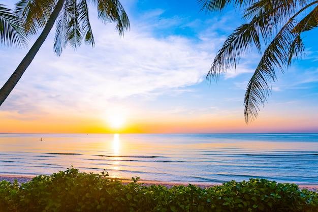 Mooi openluchtaardlandschap van overzees en strand met kokosnotenpalm