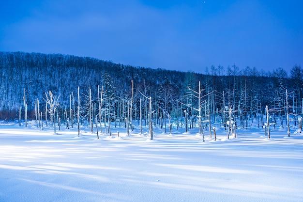 Mooi openluchtlandschap met blauwe vijverrivier bij nacht met licht omhoog in sneeuwwinterseizoen
