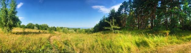 Mooi panorama van weiland en bosrand in de buurt van de oever van het kaniv-reservoir, oekraïne