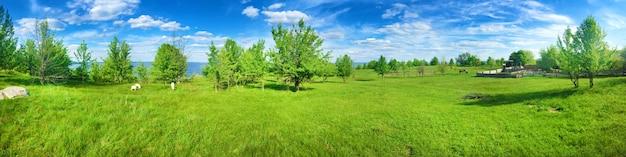 Mooi platteland panorama in zonnige dag met heldere bewolkte hemel