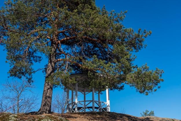 Mooi prieel op een heuvel naast een pijnboomboom. hoge kwaliteit foto