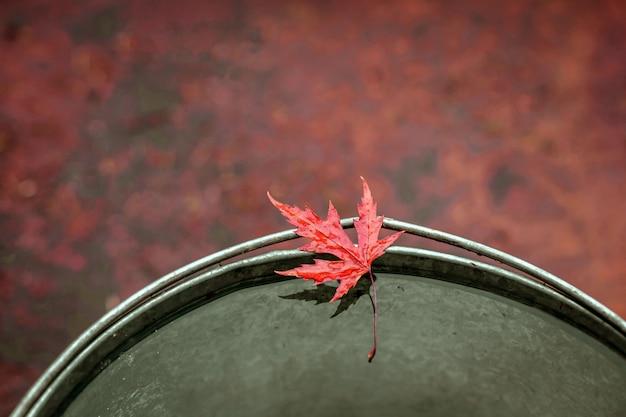 Mooi rood esdoornblad aan de rand van een tinnen emmer