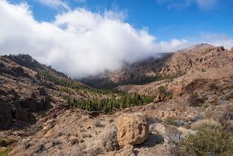 Mooi rotsachtig vulkanisch landschap in het nationale park van Teide in Tenerife, Canarische Eilanden.
