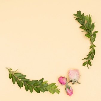Mooi rozen en bladerentakje over beige achtergrond