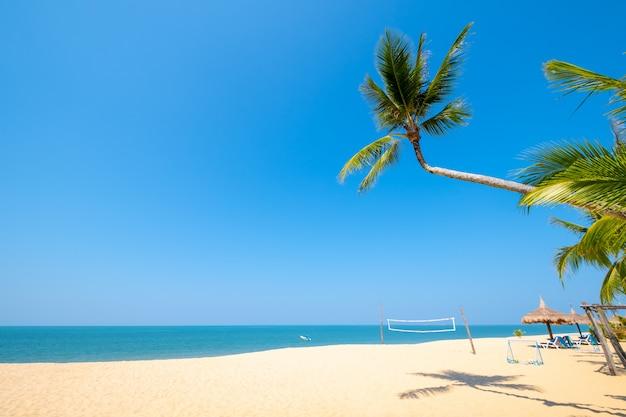 Mooi rustig landschap van tropische landschaps overzeese mening en palm op zandstrand