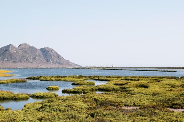 Mooi schilderachtig schot van een meer dat door groen gras en hoge bergen onder de blauwe hemel wordt omringd