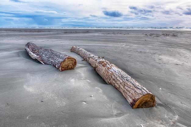 Mooi schot van boomlogboeken die in zand bij het strand onder de bewolkte hemel leggen