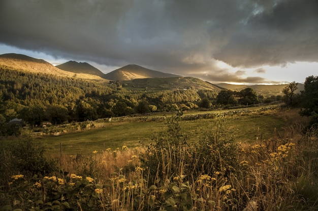Mooi schot van de heuvels tijdens de zonsondergang in de bergen van mourne in noord-ierland
