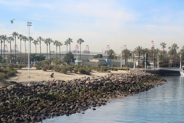 Mooi schot van de long beach in californië, verenigde staten