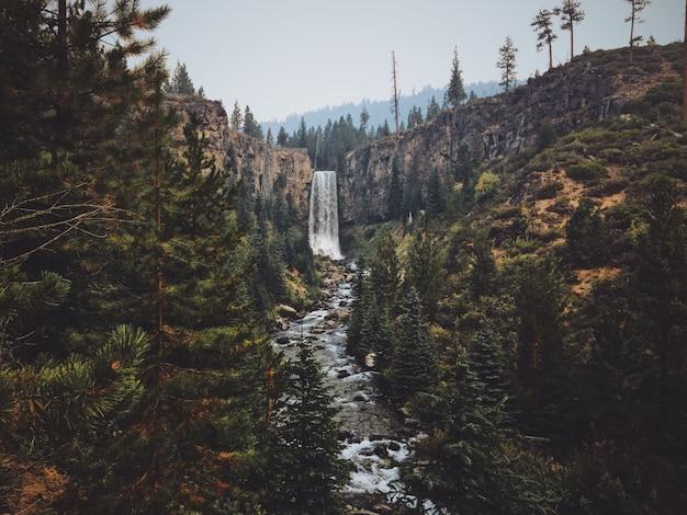 Mooi schot van de tumalo-waterval in het midden van het bos