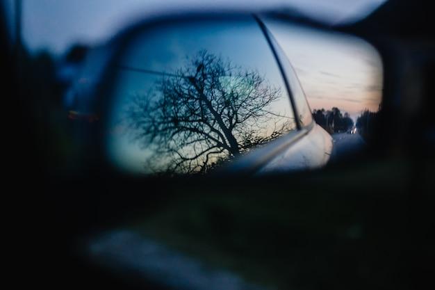 Mooi schot van een boom die in de zijspiegel van een auto wordt weerspiegeld