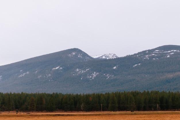 Mooi schot van een droog veld met groen en hoge rotsachtige heuvels en bergen