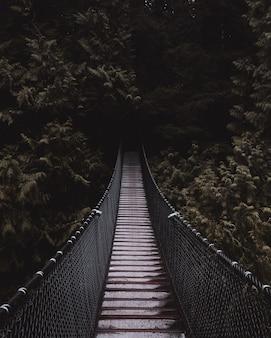 Mooi schot van een houten hangbrug die leidt naar een donker mysterieus bos