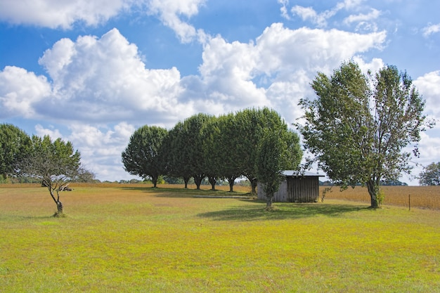 Mooi schot van een paar bomen en een klein huis in de vallei onder de bewolkte hemel