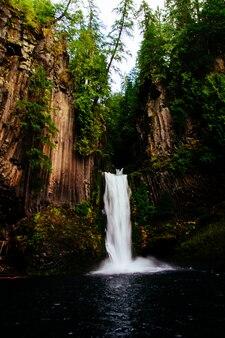 Mooi schot van een waterval in het bos dat door hoge bomen wordt omringd