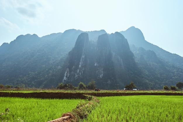 Mooi schot van karstgebergte met rijstvelden op de voorgrond in vang vieng, laos