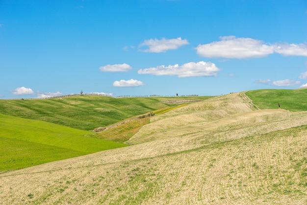 Mooi schot van met gras begroeide heuvels met een blauwe hemel overdag