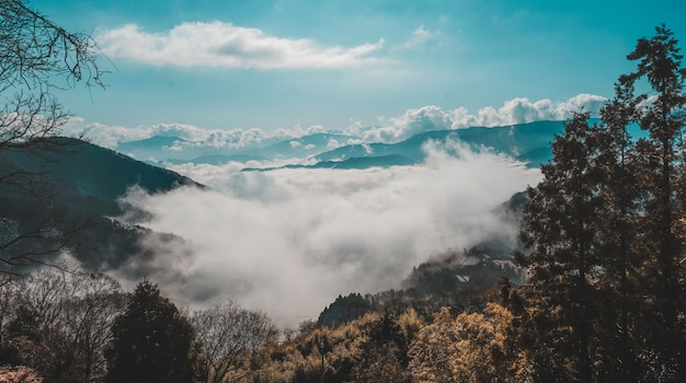 Mooi shot van een beboste berg boven de wolken onder een blauwe hemel