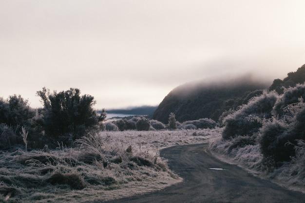 Mooi shot van een bochtige pad omgeven door heuvels en berijpt gras bedekt met mist