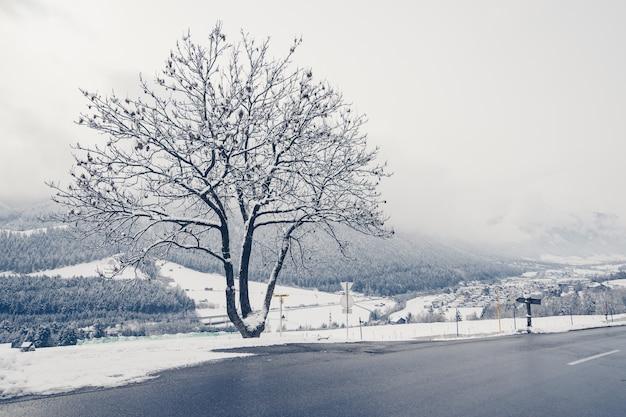 Mooi shot van een lege weg met bomen en heuvels bedekt met sneeuw