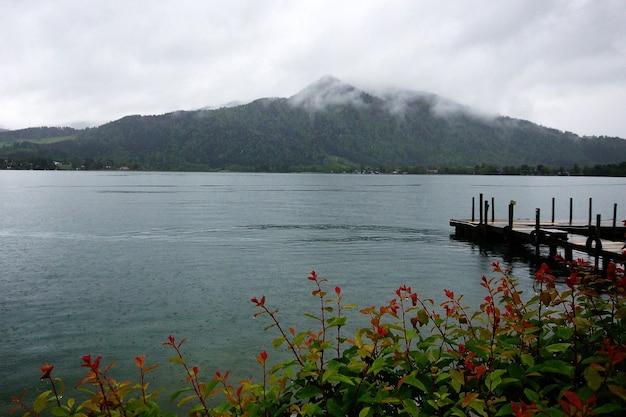 Mooi shot van een meer met een brug van een bloemrijke struik met een bewolkte berg