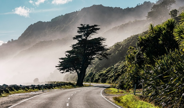 Mooi shot van een weg in een mistige berg overdag