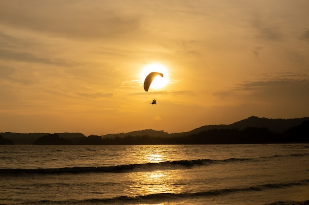 Mooi silhouet van glijscherm die in de hemel van zonsondergang op het strand vliegen.
