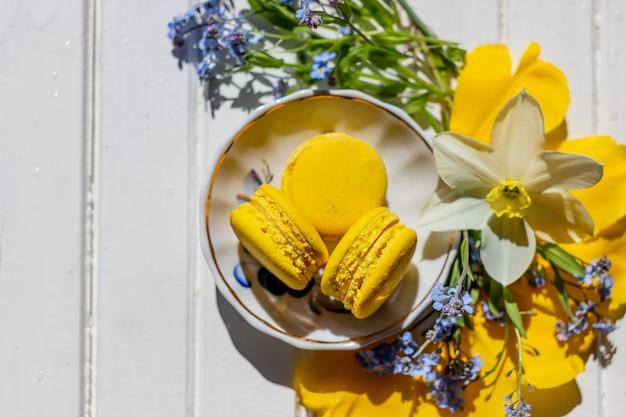 Mooi stilleven met macaronkoekjes en flowers.lemon-geïsoleerd dessert