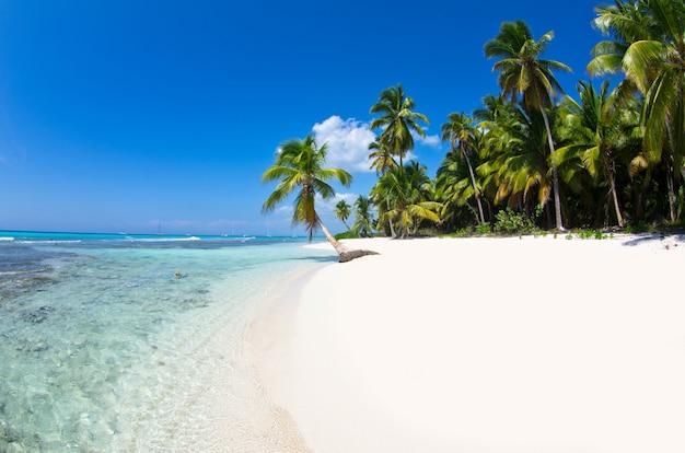 Mooi strand en tropisch overzees landschap