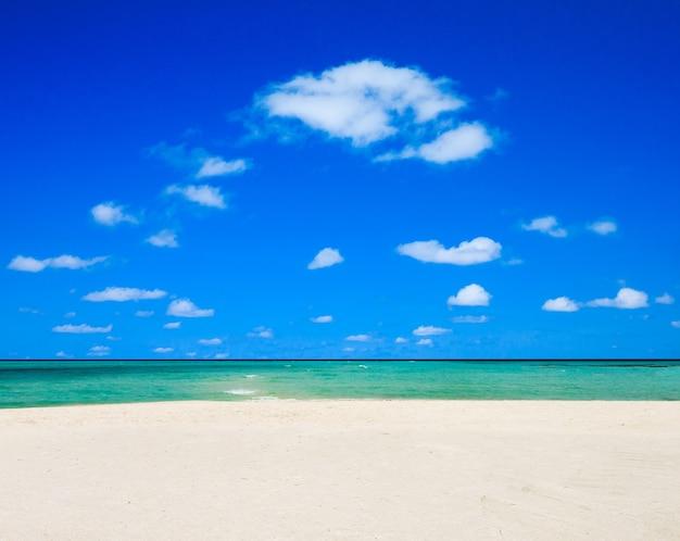 Mooi tropisch eiland van de maldiven met strand Premium Foto