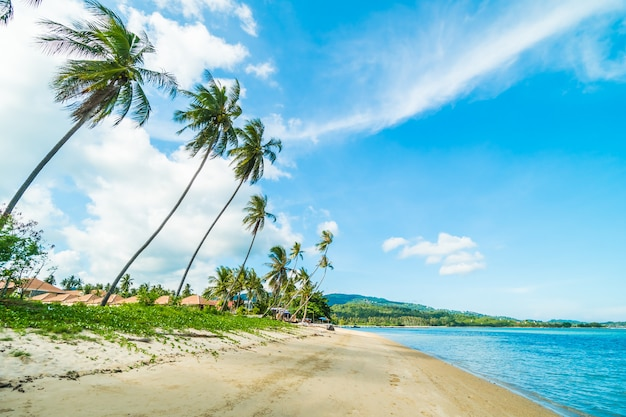 Mooi tropisch strand en zee met kokosnotenpalm
