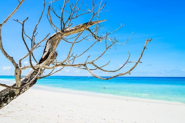 Mooi tropisch strand