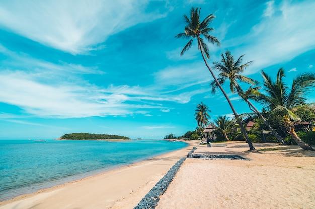 Mooi tropisch strandoverzees en zand met kokosnotenpalm op blauwe hemel en witte wolk
