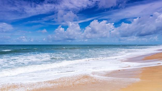 Mooi tropisch zandig strand met blauwe oceaan en blauwe hemelachtergrond