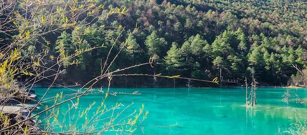 Mooi van blue moon valley, bezienswaardigheid en populaire plek voor toeristische attracties in het schilderachtige gebied jade dragon snow mountain (yulong), in de buurt van de oude binnenstad van lijiang. lijiang, yunnan, china