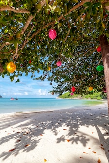 Mooi verbazend tropisch strand, wit zand, blauwe hemel met wolken en weerspiegeling van bomen op zand
