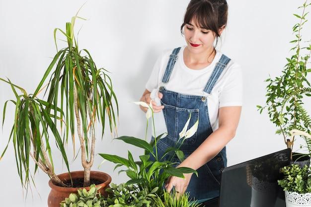 Mooi vrouwelijk bloemist bespuitend water op ingemaakte installaties in bloemenwinkel