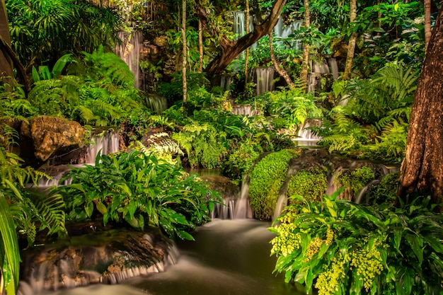 Mooi water vallen op een rots in de nacht met bomen in de prachtige natuur