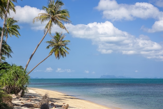 Mooi wild tropisch strand, eilandmening, thailand