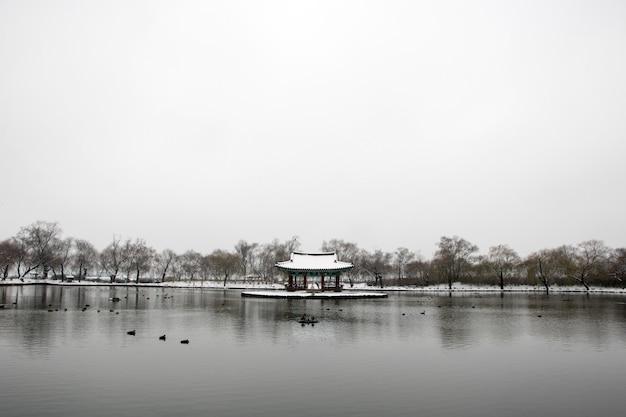 Mooi winterlandschap met koreaans traditioneel huis